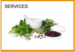 Naturopathic Services: Naturopathic Doctor in Peterborough Ontario
